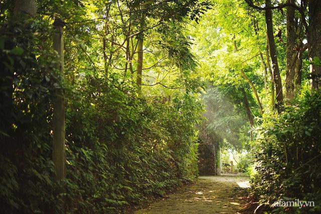 Cuộc sống yên bình trong ngôi nhà nhỏ và khu vườn xanh mát bóng cây ở ngoại thành Hà Nội - Ảnh 6.