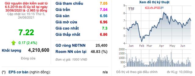 Gỗ Trường Thành (TTF): Thị giá 7.220 đồng/cp nhưng phát hành với giá 10.000 đồng/cp, đã có 19 nhà đầu tư tham gia đợt chào bán 595 tỷ đồng - Ảnh 3.