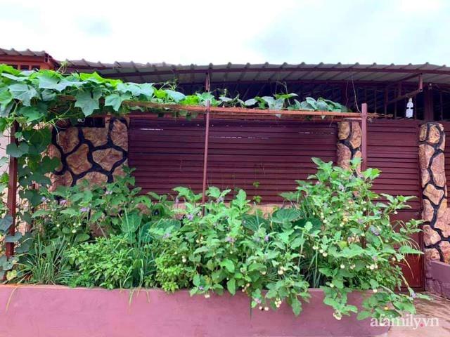 Khu vườn trước cửa xanh mát với đủ loại rau củ của chàng trai Việt ở châu Phi - Ảnh 1.