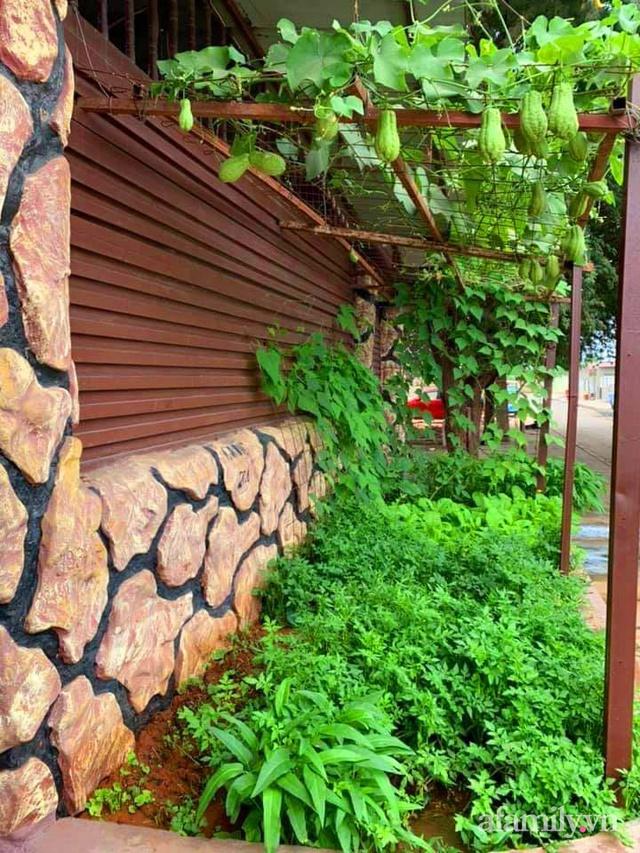 Khu vườn trước cửa xanh mát với đủ loại rau củ của chàng trai Việt ở châu Phi - Ảnh 21.