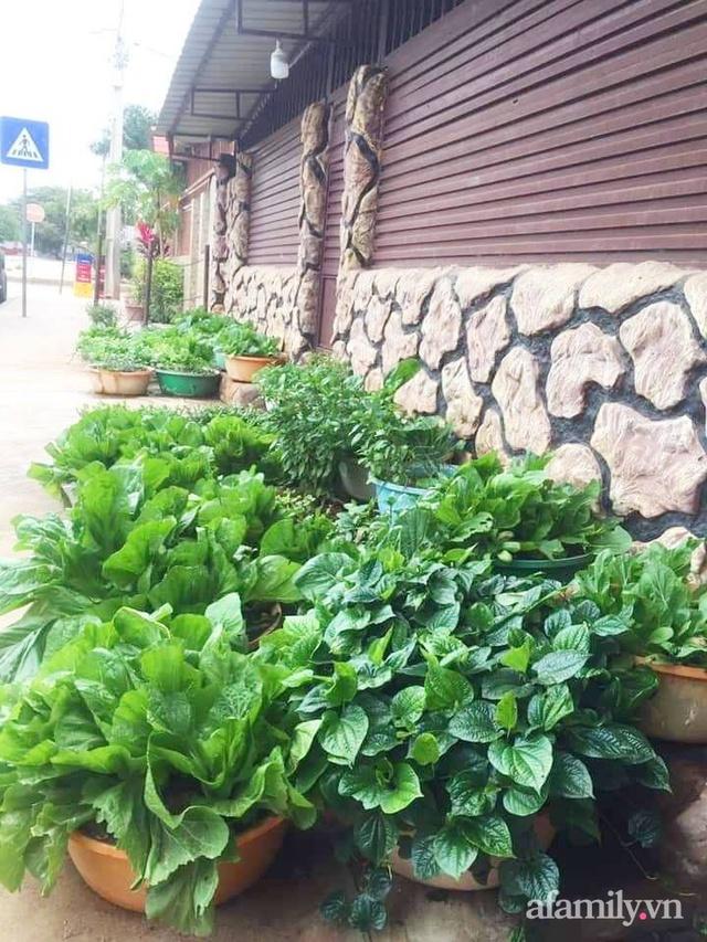 Khu vườn trước cửa xanh mát với đủ loại rau củ của chàng trai Việt ở châu Phi - Ảnh 7.