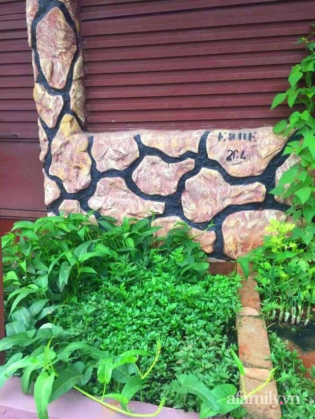 Khu vườn trước cửa xanh mát với đủ loại rau củ của chàng trai Việt ở châu Phi - Ảnh 8.