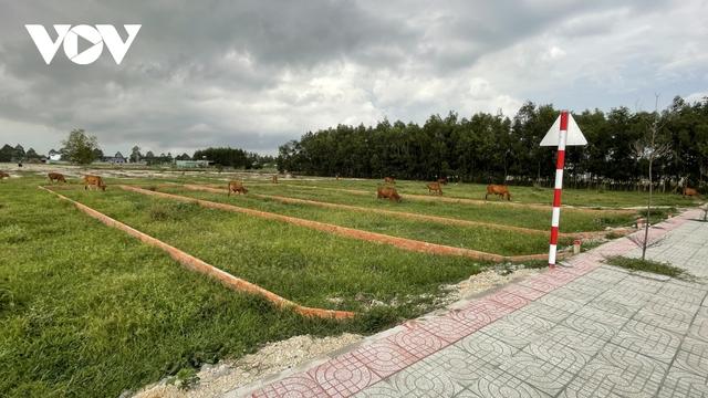 Mất kiểm soát tình trạng phân lô, bán nền trên đất nông nghiệp ở Bà Rịa – Vũng Tàu  - Ảnh 2.