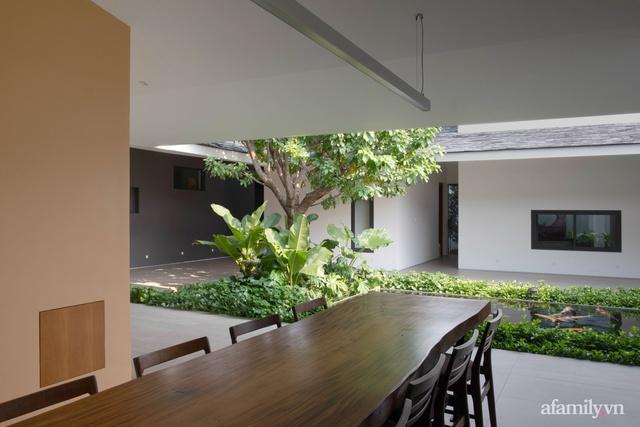 Gia đình 3 thế hệ với cuộc sống an yên trong ngôi nhà rợp mát bóng cây ở ngoại ô Sài Gòn - Ảnh 10.