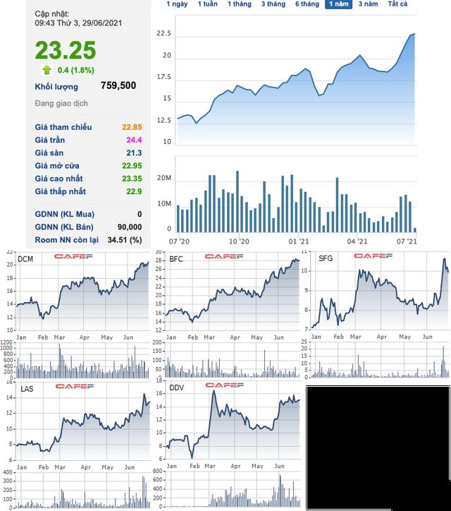 Giá phân bón nhảy vọt trước tình trạng khan hiếm gia tăng, cổ phiếu ngành DCM, DPM, LAS tăng phi mã - Ảnh 3.