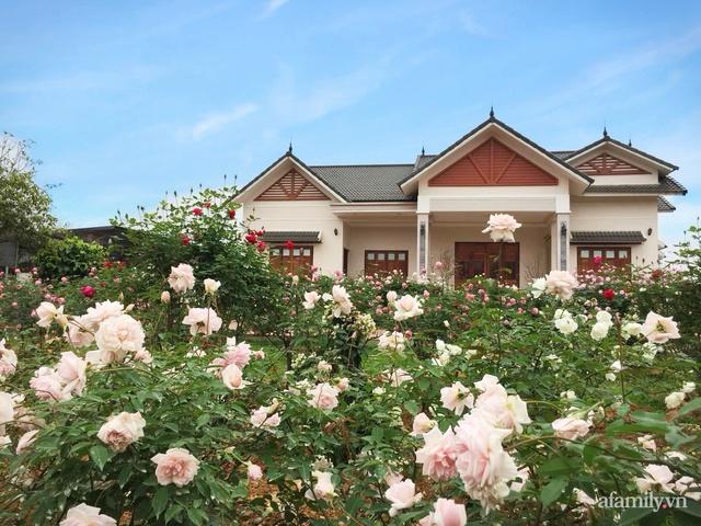 Cuộc sống an yên trong ngôi nhà có vườn hoa hồng quanh năm tỏa hương sắc của gia đình 3 thế hệ ở Ba Vì, Hà Nội - Ảnh 1.