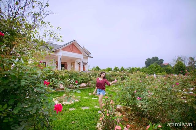 Cuộc sống an yên trong ngôi nhà có vườn hoa hồng quanh năm tỏa hương sắc của gia đình 3 thế hệ ở Ba Vì, Hà Nội - Ảnh 2.
