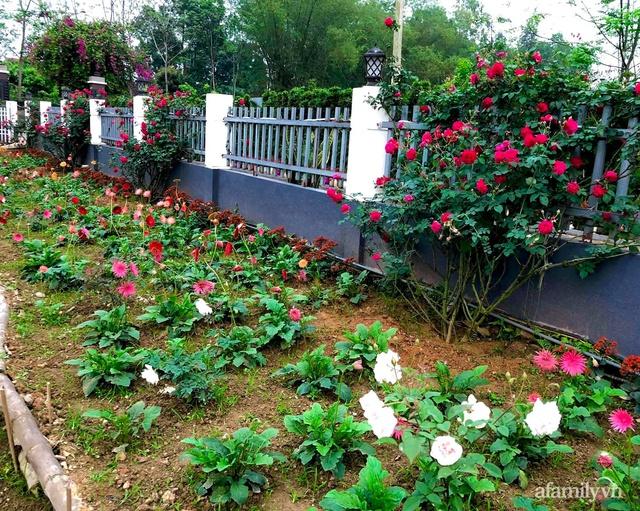 Cuộc sống an yên trong ngôi nhà có vườn hoa hồng quanh năm tỏa hương sắc của gia đình 3 thế hệ ở Ba Vì, Hà Nội - Ảnh 35.