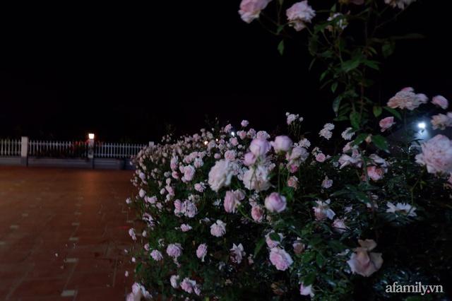 Cuộc sống an yên trong ngôi nhà có vườn hoa hồng quanh năm tỏa hương sắc của gia đình 3 thế hệ ở Ba Vì, Hà Nội - Ảnh 10.