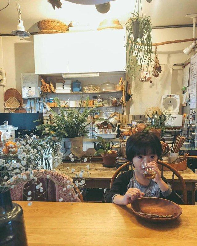 """""""Rừng bách thảo mát mắt"""" ngay trong nhà của bà nội trợ Nhật Bản khiến ai cũng ghen tị: Bạn cũng có thể làm được nếu nắm chắc bí kíp đơn giản này - Ảnh 1."""