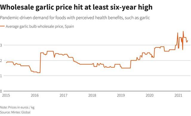 Được coi là siêu thực phẩm kháng bệnh, giá gừng, tỏi, nghệ acai tiếp tục tăng vọt mùa Covid - Ảnh 3.
