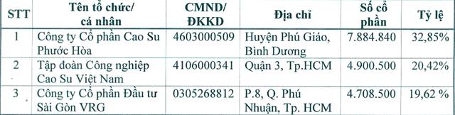Tập đoàn Cao su muốn thoái vốn tại KCN Nam Tân Uyên (NTC) - Ảnh 1.