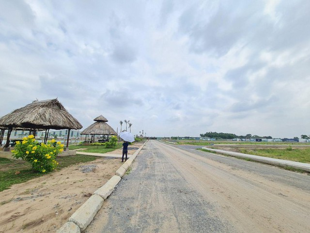 Rộ dự án bất động sản ngang nhiên bán lúa non ở Long An - Ảnh 1.