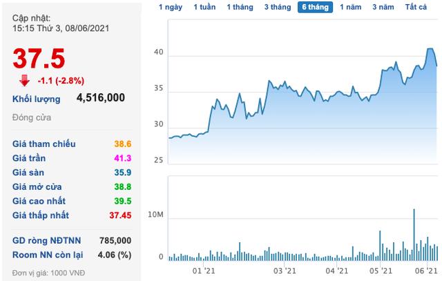 Nam Long (NLG) chào bán 60 triệu cổ phần giá tối đa 37.800 đồng/cp, Gelex là 1 trong 2 nhà đầu tư mua vào lượng lớn - Ảnh 2.