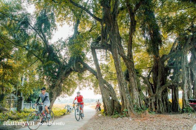 Ngôi làng độc nhất Việt Nam sở hữu CHIẾC CỔNG CÒN SỐNG SUỐT 800 NĂM, được công nhận là di sản và là bối cảnh của không biết bao nhiêu bộ phim đình đám  - Ảnh 1.