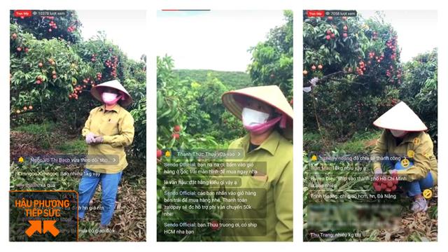 Một nông dân Bắc Giang livestream 10 phút bán 2 tấn vải thiều - Ảnh 1.
