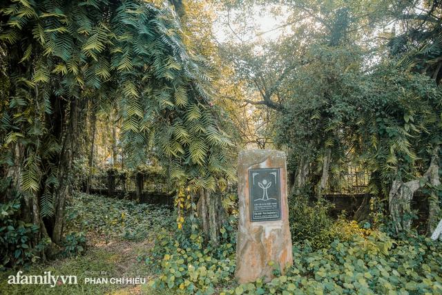 Ngôi làng độc nhất Việt Nam sở hữu CHIẾC CỔNG CÒN SỐNG SUỐT 800 NĂM, được công nhận là di sản và là bối cảnh của không biết bao nhiêu bộ phim đình đám  - Ảnh 11.
