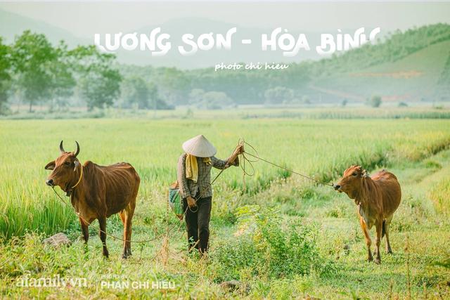 Ngôi làng độc nhất Việt Nam sở hữu CHIẾC CỔNG CÒN SỐNG SUỐT 800 NĂM, được công nhận là di sản và là bối cảnh của không biết bao nhiêu bộ phim đình đám  - Ảnh 13.