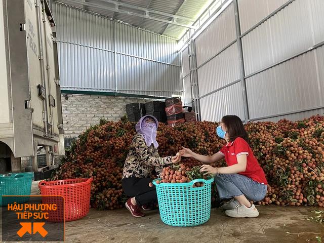 Một nông dân Bắc Giang livestream 10 phút bán 2 tấn vải thiều - Ảnh 3.