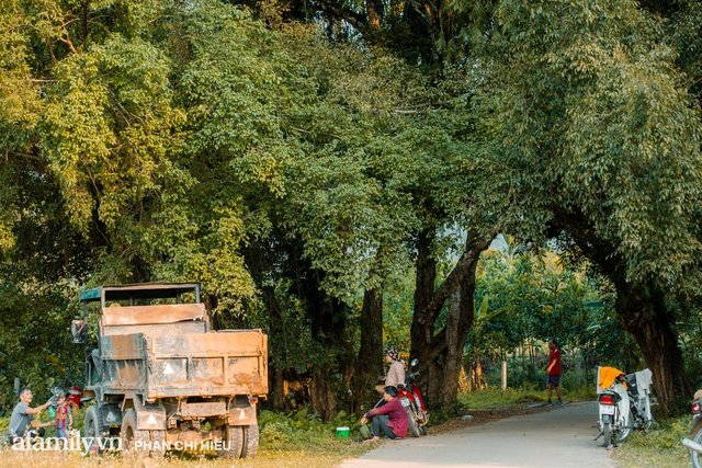 Ngôi làng độc nhất Việt Nam sở hữu CHIẾC CỔNG CÒN SỐNG SUỐT 800 NĂM, được công nhận là di sản và là bối cảnh của không biết bao nhiêu bộ phim đình đám  - Ảnh 9.