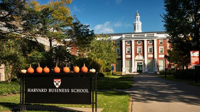 Chỉ cần 1 tờ giấy trắng, Đại học Harvard chỉ ra bạn nên học ngành gì, làm nghề gì thì phù hợp: Xem xong đầu óc bừng sáng - Ảnh 1.