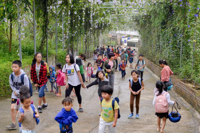 3 ngôi trường liên cấp đặc biệt ở Hà Nội - nơi trẻ được vẫy vùng giữa thiên nhiên, thoát khỏi gánh nặng điểm số: Hạnh phúc là tiêu chí giáo dục quan trọng nhất! - Ảnh 2.