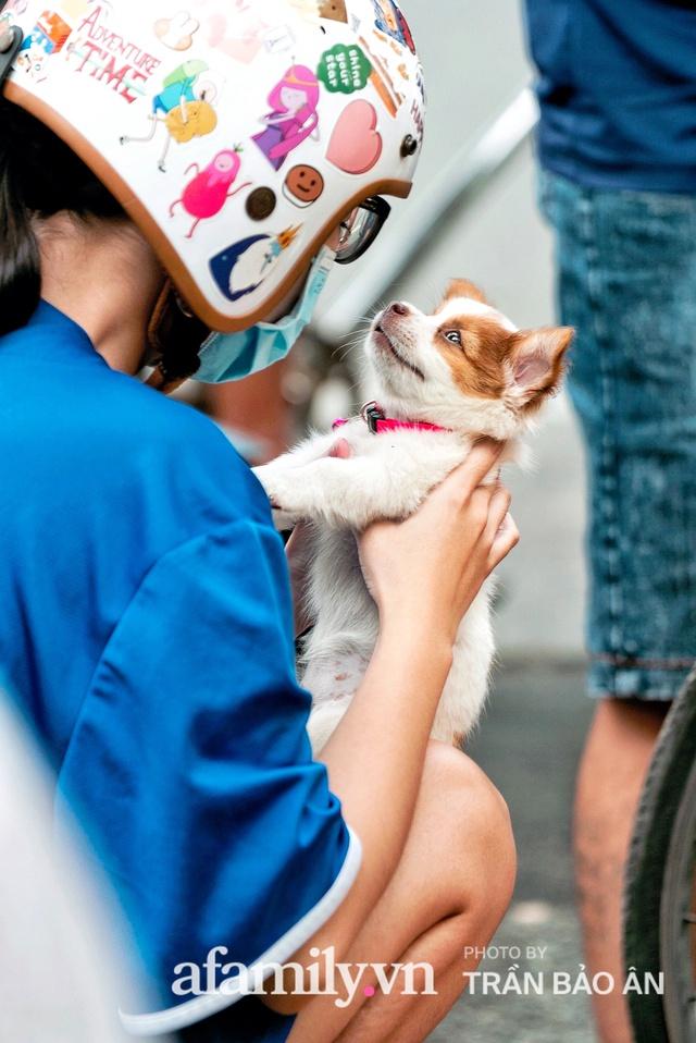 Cụ ông câm điếc cưu mang chú chó nhỏ, thà rong ruổi bán từng tờ vé số chứ không nhận 70 triệu khi người Sài Gòn dang tay giúp đỡ  - Ảnh 12.