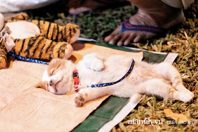Cụ ông câm điếc cưu mang chú chó nhỏ, thà rong ruổi bán từng tờ vé số chứ không nhận 70 triệu khi người Sài Gòn dang tay giúp đỡ  - Ảnh 17.
