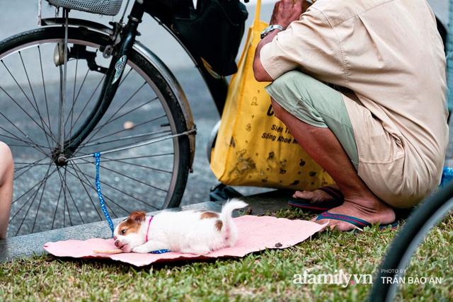 Cụ ông câm điếc cưu mang chú chó nhỏ, thà rong ruổi bán từng tờ vé số chứ không nhận 70 triệu khi người Sài Gòn dang tay giúp đỡ  - Ảnh 7.