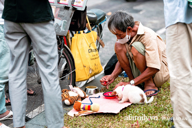 Cụ ông câm điếc cưu mang chú chó nhỏ, thà rong ruổi bán từng tờ vé số chứ không nhận 70 triệu khi người Sài Gòn dang tay giúp đỡ  - Ảnh 8.