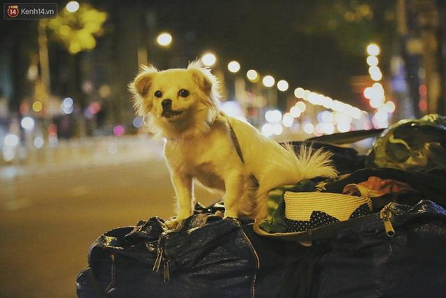 Người vô gia cư lay lắt trong đêm đầu Sài Gòn giãn cách: Con không có nhà, tối con ra Cầu Mống mà ngủ - Ảnh 26.