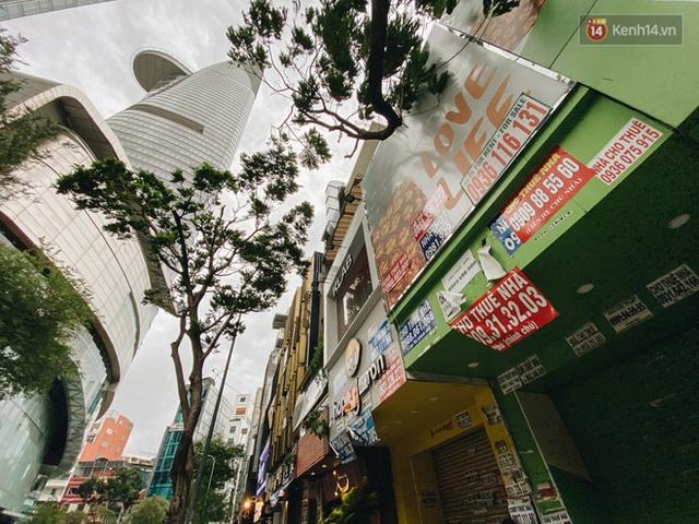 """Mặt bằng nhà phố trung tâm Sài Gòn """"kiệt sức"""" vì Covid-19: Chi chít bảng cho thuê nhưng chẳng ai ngó ngàng - Ảnh 11."""