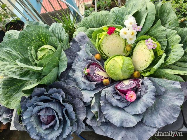 Sự quy củ đến bất ngờ của khu vườn sân thượng với trăm loại rau sạch xanh mát ở Bình Dương - Ảnh 22.