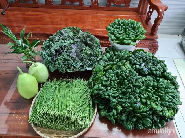 Sự quy củ đến bất ngờ của khu vườn sân thượng với trăm loại rau sạch xanh mát ở Bình Dương - Ảnh 26.