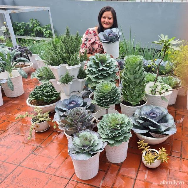 Sự quy củ đến bất ngờ của khu vườn sân thượng với trăm loại rau sạch xanh mát ở Bình Dương - Ảnh 4.