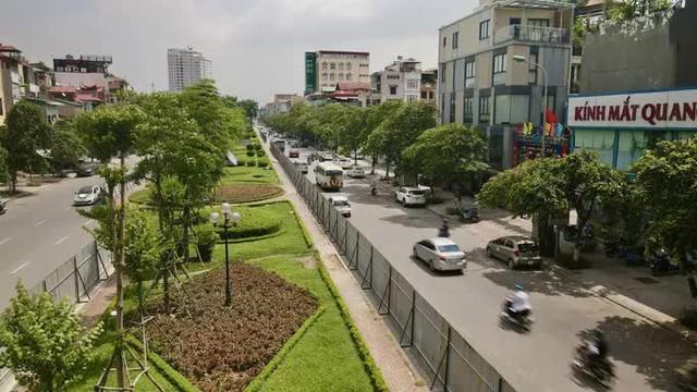 CLIP: Con đường đẹp nhất Hà Nội bị quây tôn, di dời hàng cây để mở rộng  - Ảnh 5.