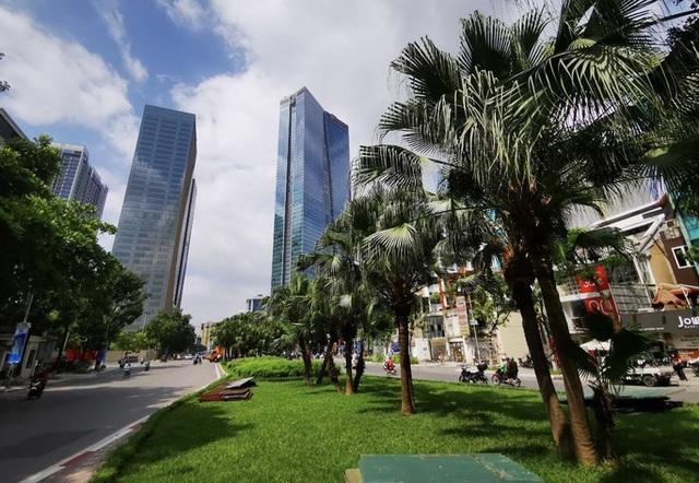 CLIP: Con đường đẹp nhất Hà Nội bị quây tôn, di dời hàng cây để mở rộng  - Ảnh 7.