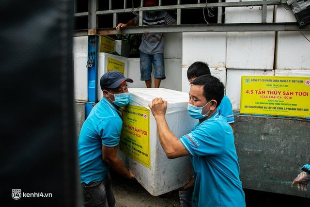Ảnh, clip: Người Sài Gòn vui hết nấc khi tận tay nhận cá cứu trợ từ bà con miền Tây - Ảnh 1.