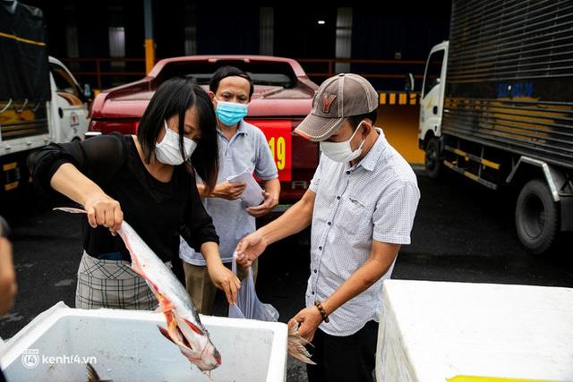Ảnh, clip: Người Sài Gòn vui hết nấc khi tận tay nhận cá cứu trợ từ bà con miền Tây - Ảnh 19.
