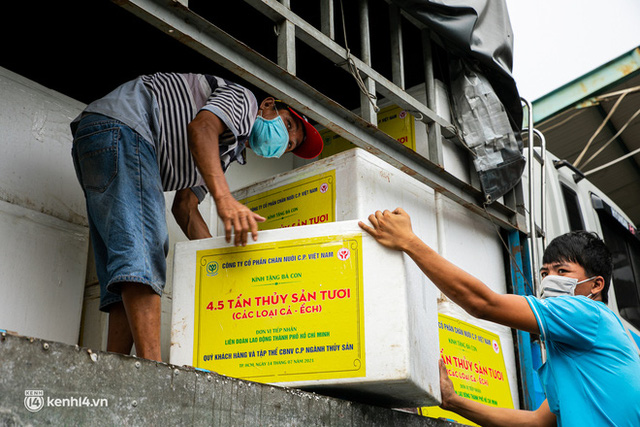 Ảnh, clip: Người Sài Gòn vui hết nấc khi tận tay nhận cá cứu trợ từ bà con miền Tây - Ảnh 4.