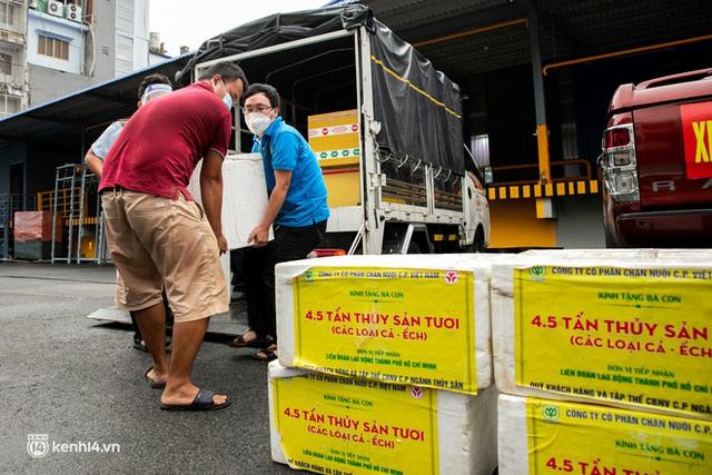 Ảnh, clip: Người Sài Gòn vui hết nấc khi tận tay nhận cá cứu trợ từ bà con miền Tây - Ảnh 5.