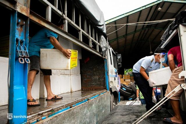 Ảnh, clip: Người Sài Gòn vui hết nấc khi tận tay nhận cá cứu trợ từ bà con miền Tây - Ảnh 6.