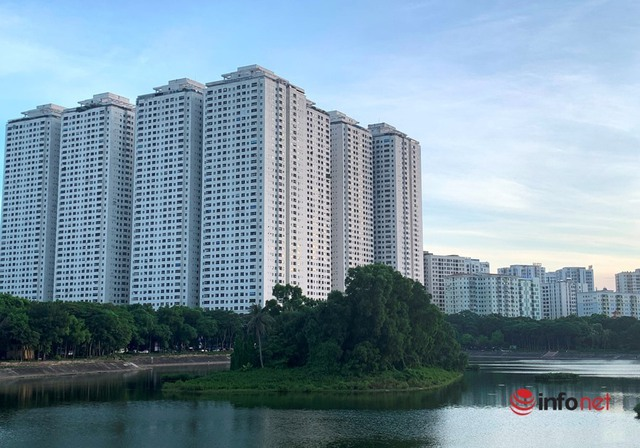 Cục Quản lý nhà và Thị trường BĐS: Đại dịch, giá vật liệu tăng đẩy giá nhà đất lên cao - Ảnh 1.