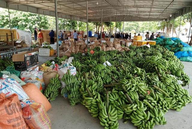 [ẢNH] Người dân xứ Nghệ quyên góp rau củ, ngày đêm làm đồ ăn để ủng hộ tâm dịch TP. HCM - Ảnh 1.