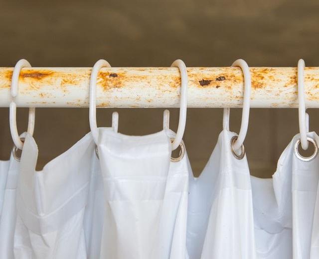 """5 """"ổ chứa"""" vi khuẩn trong nhà tắm của mọi gia đình, không thường xuyên dọn dẹp thì bảo sao cả nhà suốt ngày ốm đau - Ảnh 2."""