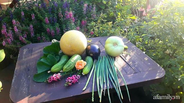 Sân thượng 50m² không khác gì trang trại với đủ loại rau quả sạch theo mùa của mẹ đảm ở Hà Nội - Ảnh 25.