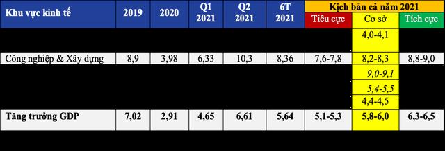 Chuyên gia đánh giá tác động của đợt bùng phát dịch Covid-19 lần thứ 4 đến hoạt động kinh tế - xã hội của Việt Nam và một số khuyến nghị - Ảnh 2.