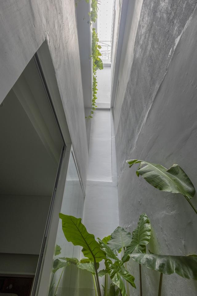 Ngôi nhà 40 tuổi trong ngõ nhỏ lột xác hoàn toàn sau cải tạo: Không gian thoáng, tràn ánh sáng, vừa gần gũi với thiên nhiên vừa đảm bảo riêng tư cho gia đình 3 thế hệ - Ảnh 8.