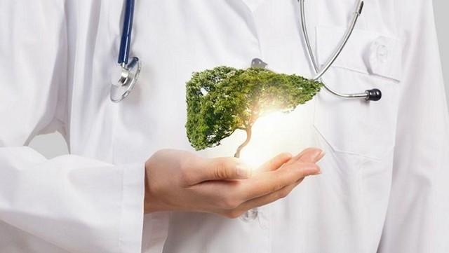 8 dấu hiệu cảnh báo gan đang bị tổn thương và 6 mẹo đơn giản để tăng cường chức năng gan: Hãy chăm lo cho nhà máy vạn năng của cơ thể ngay lúc này! - Ảnh 1.