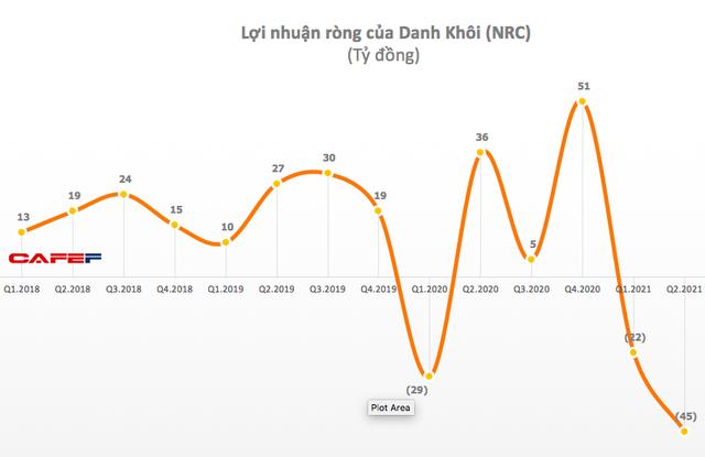 Danh Khôi (NRC): Nguồn thu eo hẹp, quý 2 lỗ 45 tỷ đồng - Ảnh 1.